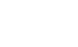 White logo for Lead Bank with words lead bank and a horse chess piece