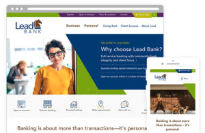ZIV Lead Bank website design on sitefinity